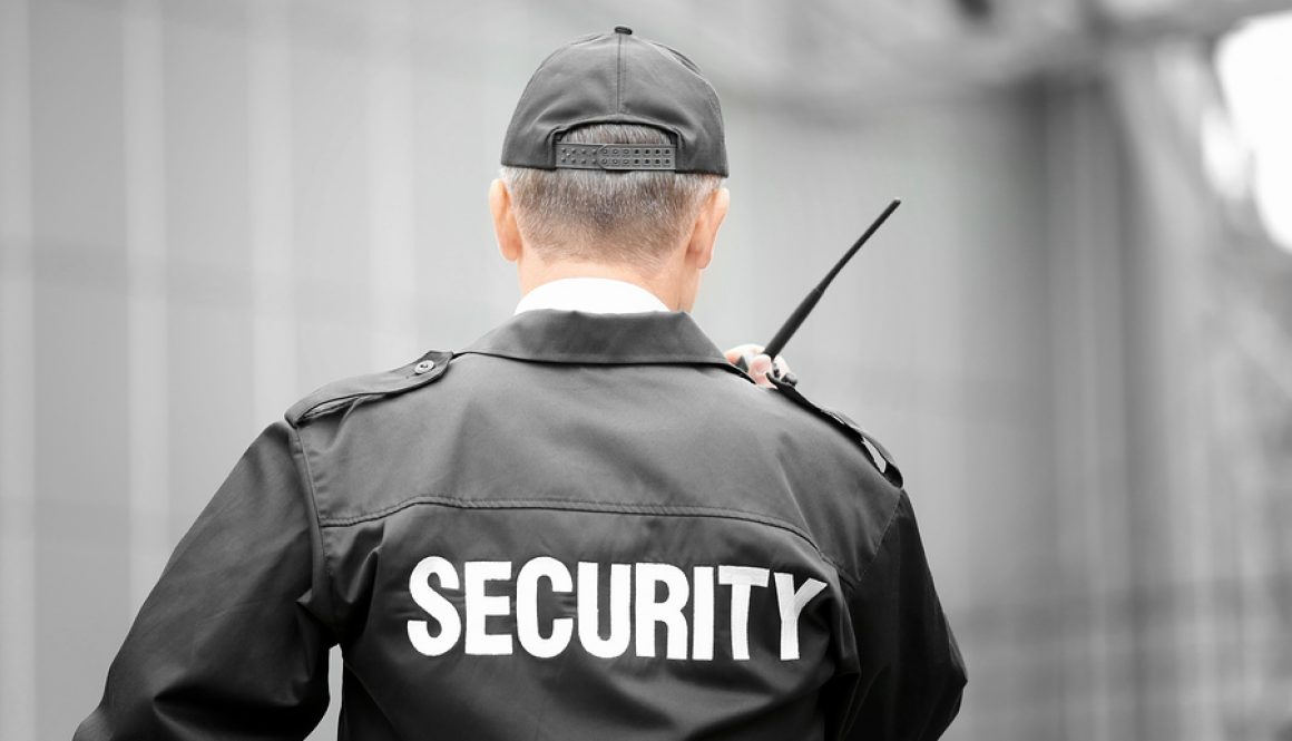 Professional Security Guard
